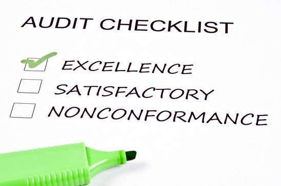 pelatihan Audit Excellence