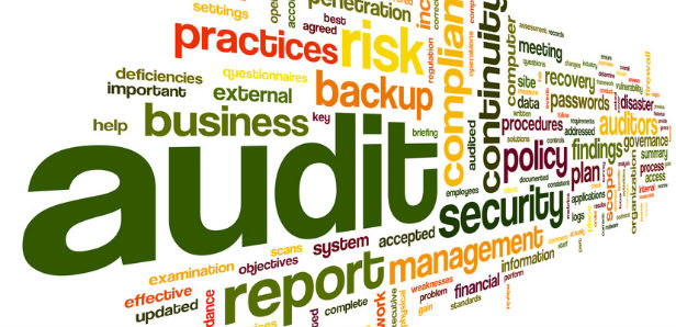 training Auditing Business Processes