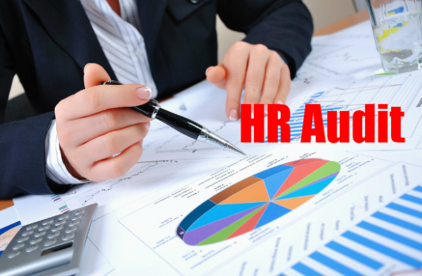 pelatihan Auditing HR Processes