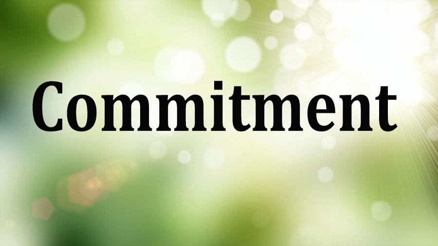 training Commitment Strategies