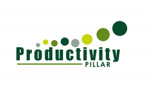 training Corporate Productivity