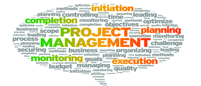 seminar Effective Leadership in Project Management