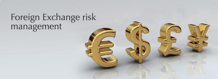 seminar Foreign Exchange Risk Management