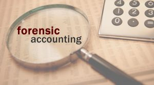 training Forensic Accounting & Investigative Audit