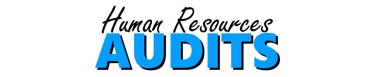 training Human Resources Audit