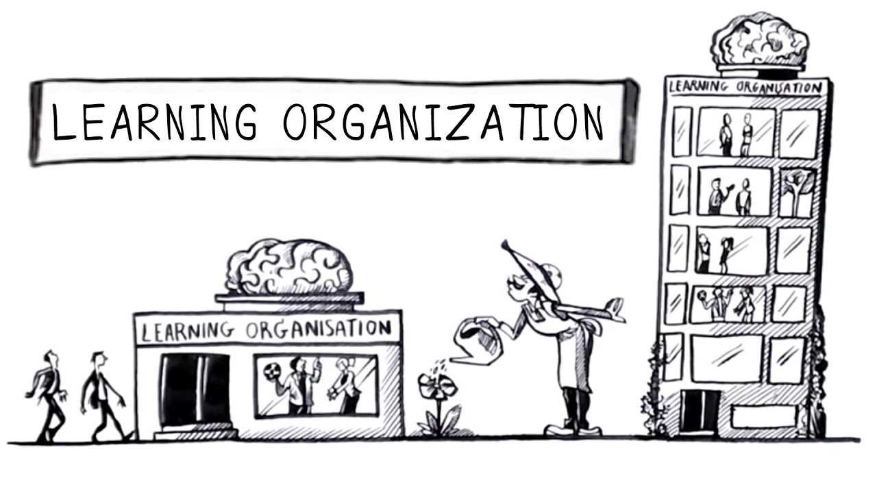training Learning Organization
