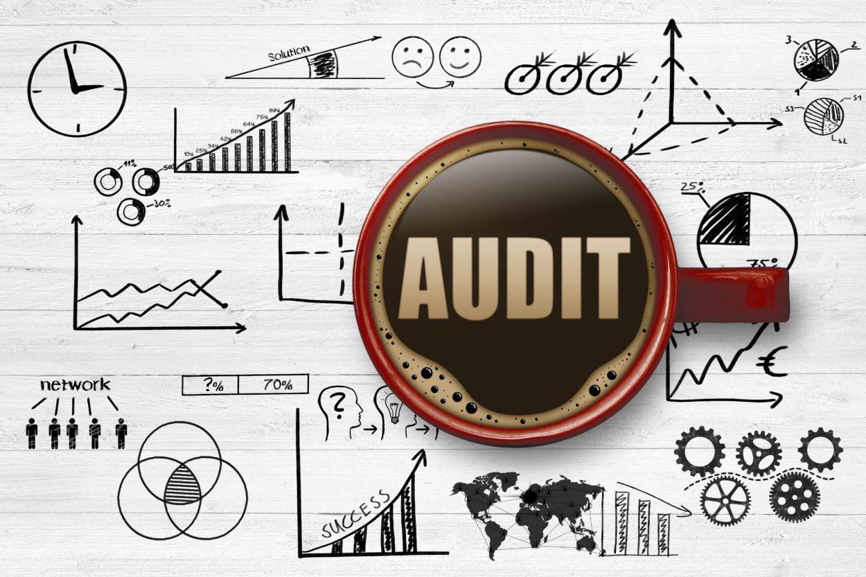 training Performance Auditing