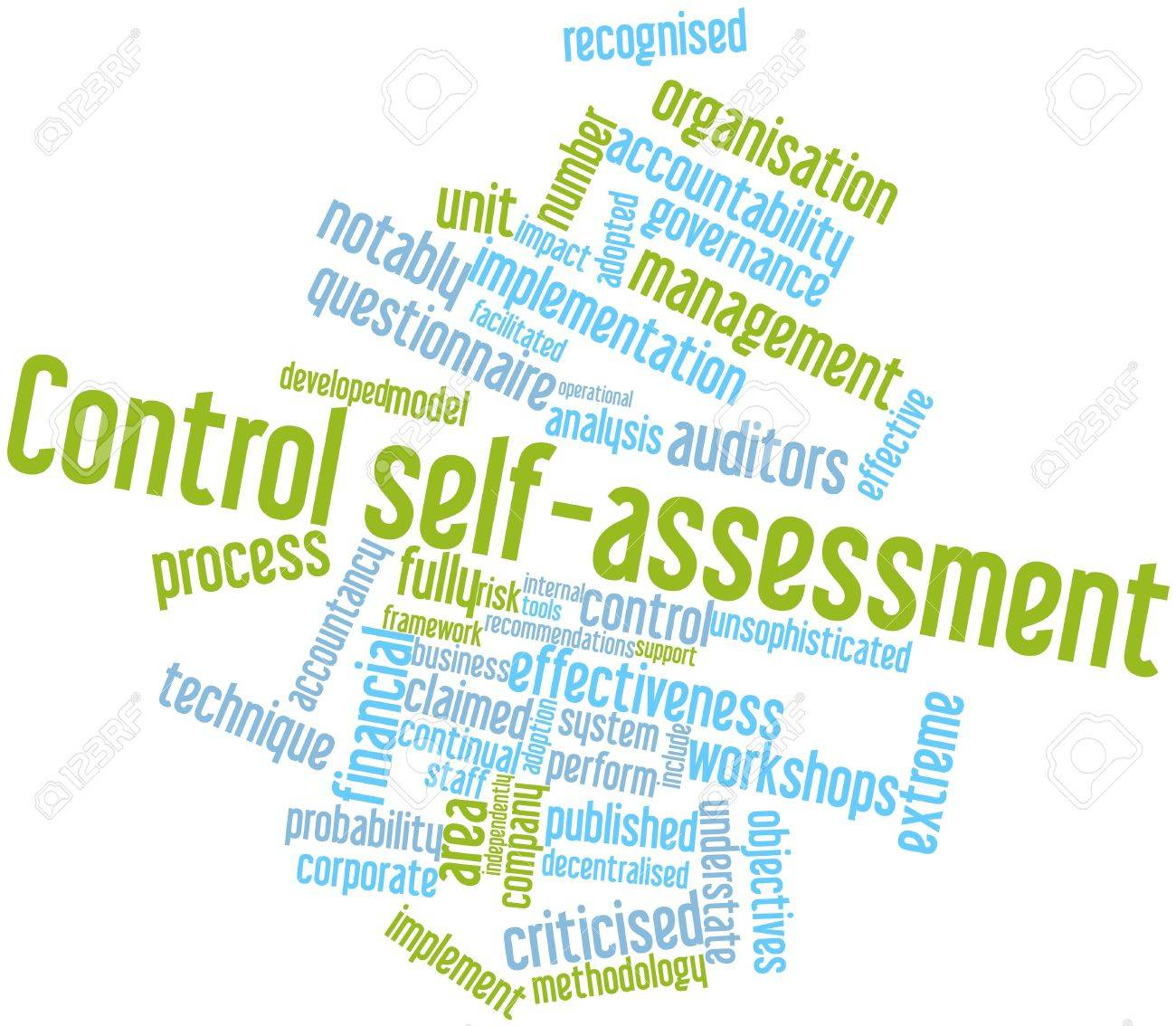 training Principles of Control Self Assessment