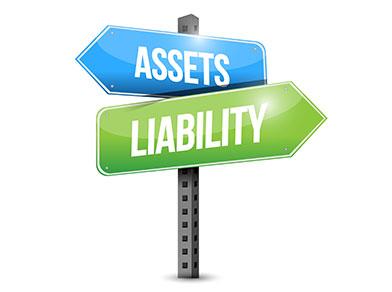 Pelatihan Asset and Liability Management