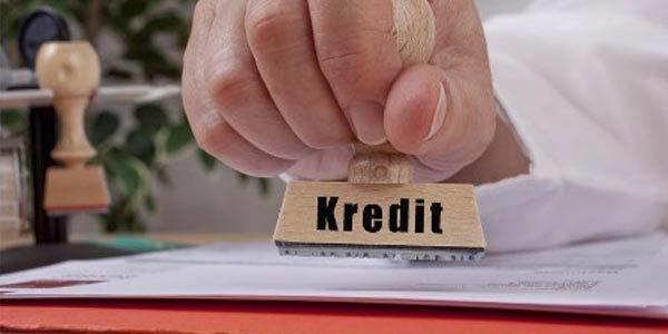 Pelatihan Audit Kredit Bank