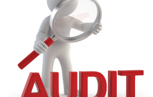 Pelatihan Fraud Retrieval and Internal Audit