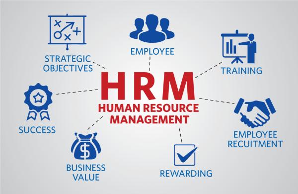 Pelatihan Human Resource Management