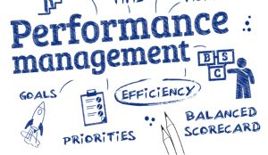 Pelatihan Individual Performance Management