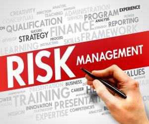 Pelatihan Risk Management In Public-Private Partnerships (PPPs)