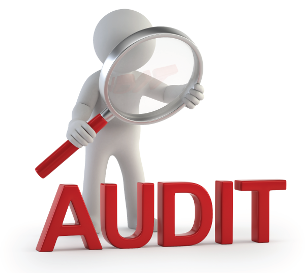 Pelatihan Strategi Menghadapi Audit Kepabeanan