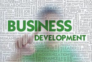 Pelatihan Strategi Pengembangan Bisnis